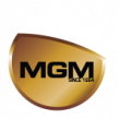 Michiana Global Mold